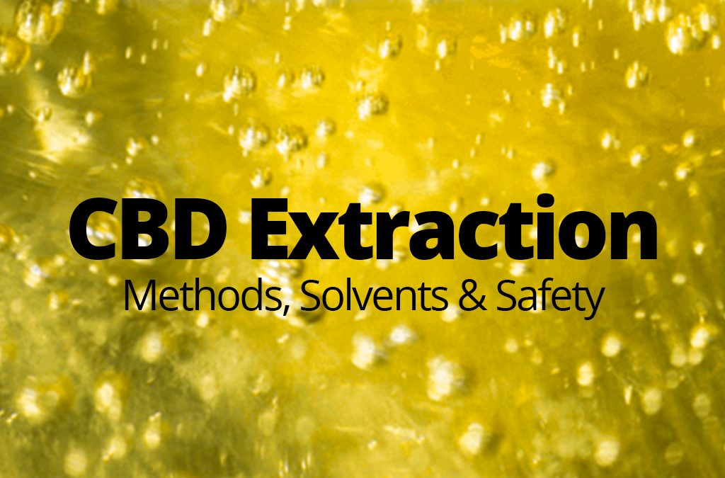 CBD Extraction