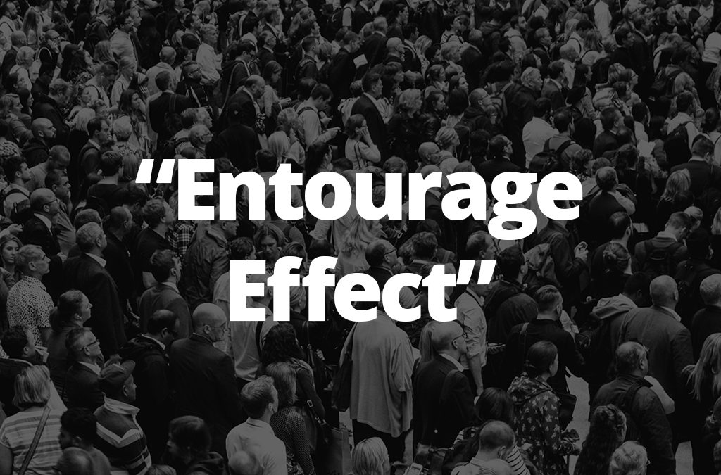 "The CBD ""Entourage Effect"""