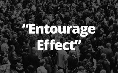 "The CBD ""Entourage Effect"""