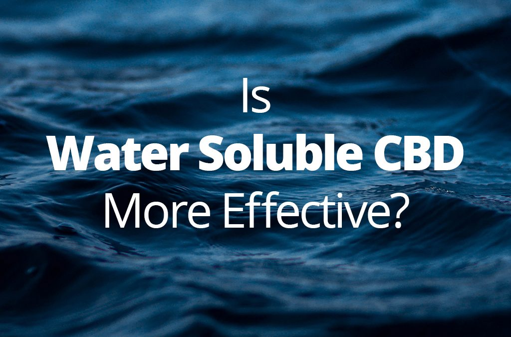 Is Water Soluble CBD More Effective?